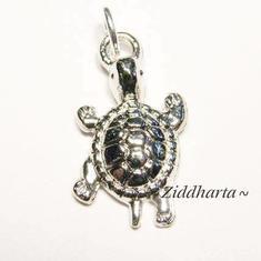 1st AS Sköldpadds-hänge ca 22mm