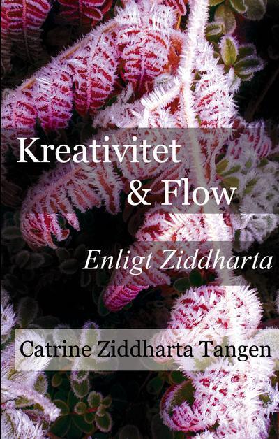 Ljudbok: Kreativitet & flow enligt Ziddharta Audiobook