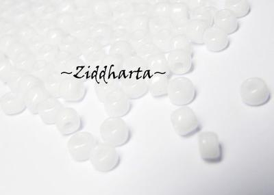 10 gram Japanska MATSUNO Seedbeads 6/0 - White