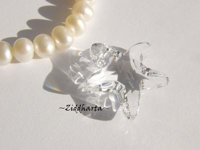 Swarovski 20mm - Starfish - Crystal