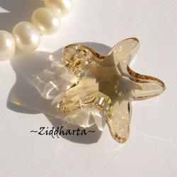 Swarovski 20mm - Starfish - Golden Shadow